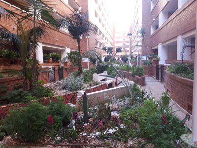 Alquiler Apartamentos en Oropesa del Mar y Marina Dor